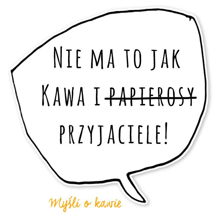 KZM_mysl-6_2
