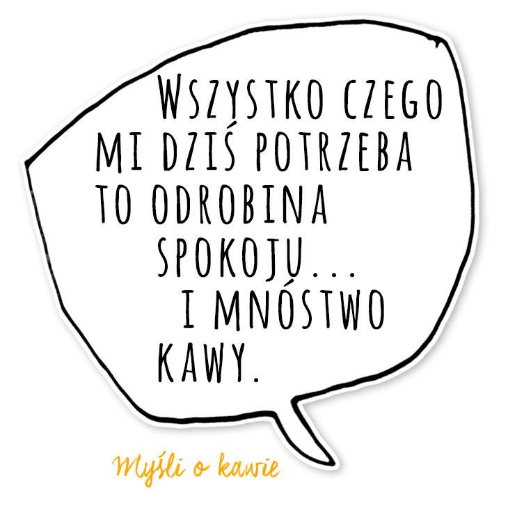 KZM_mysl-8