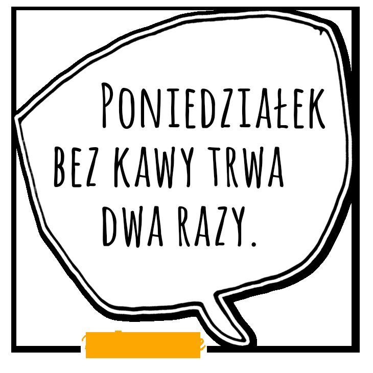KZM15_2