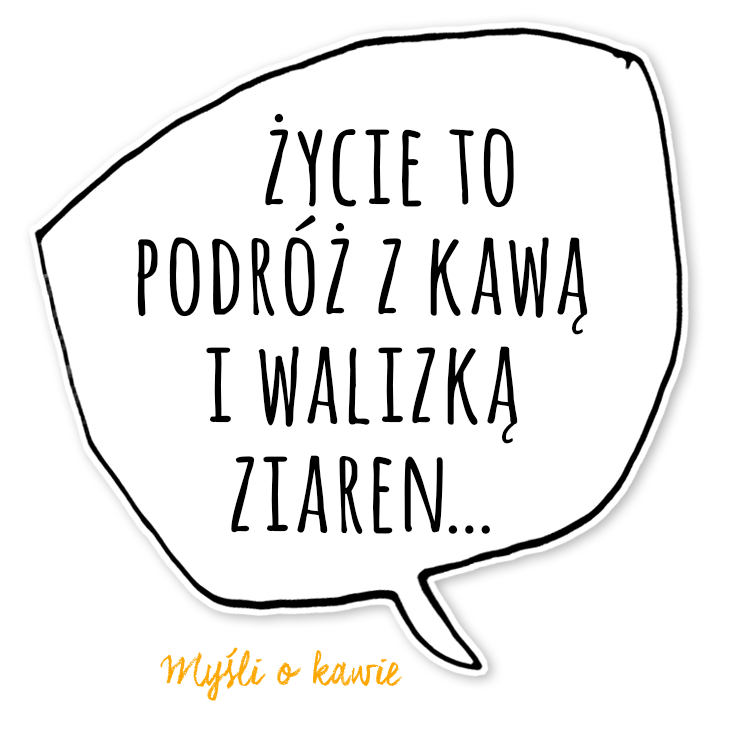 KZM18_mem2