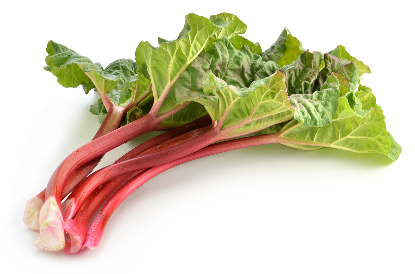 Fresh picked Rhubarb on white background
