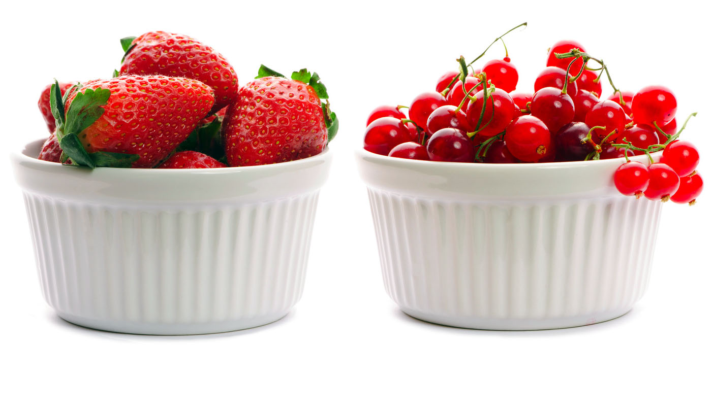 Berry in bowl collection isolated on white