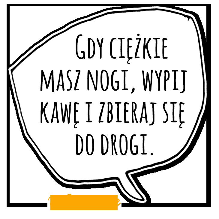 KZM22_mem1