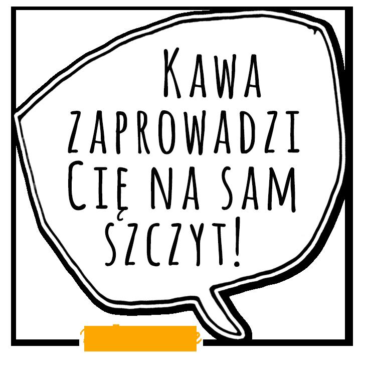 KZM22_mem3