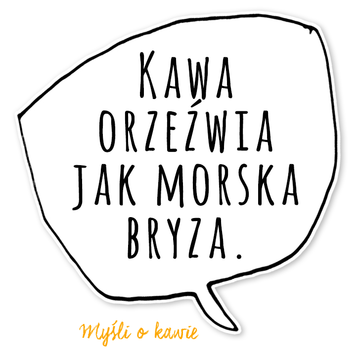 KZM22_mem4