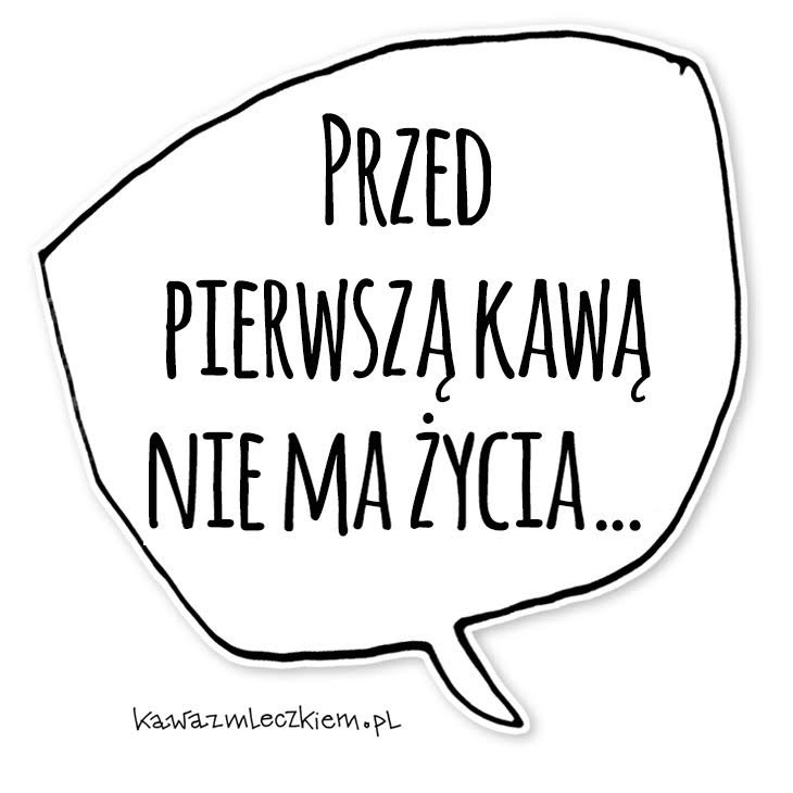 kzmnew