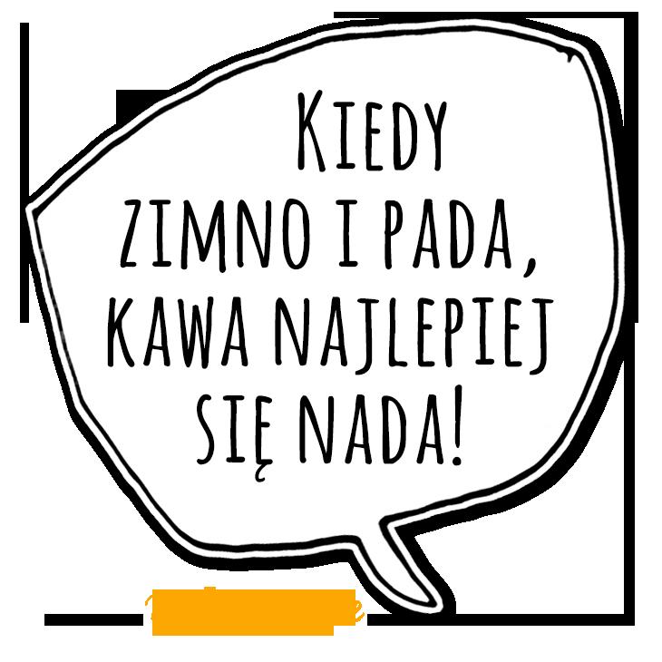 kzm29_mem2