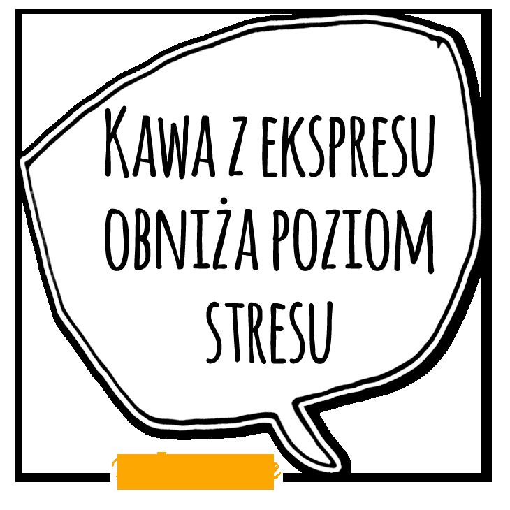 KZM31_mem3