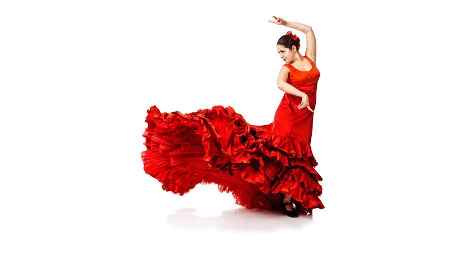 nr24_1_flamenco